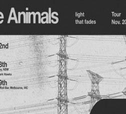 Fragile Animals - 'Light That Fades' EP Launch